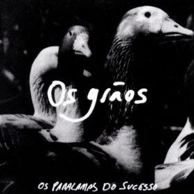 Os Paralamas do Sucesso – Os Grãos (1991)