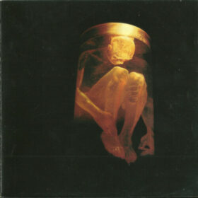 Alice In Chains – Nothing Safe, The Best Of The Box (1999)