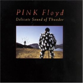 Pink Floyd – Delicate Sound Of Thunder (1988)