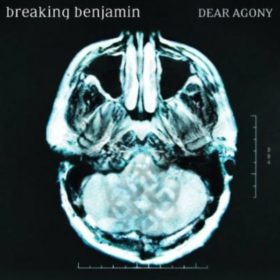 Breaking Benjamin – Dear Agony (2009)
