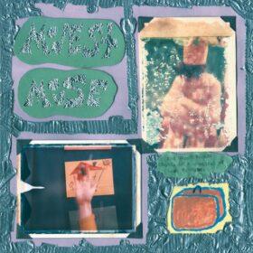 Modest Mouse – Sad Sappy Sucker (2001)