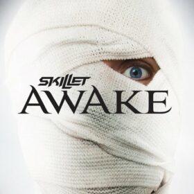 Skillet – Awake (2009)